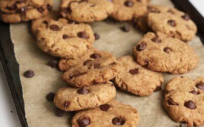 Gluten Free Vegan Chocolate Chip Cookies